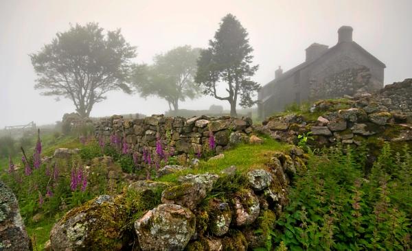 Summer Mist by RichieJ