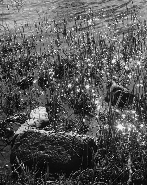 Stars by SimonAlesbrook