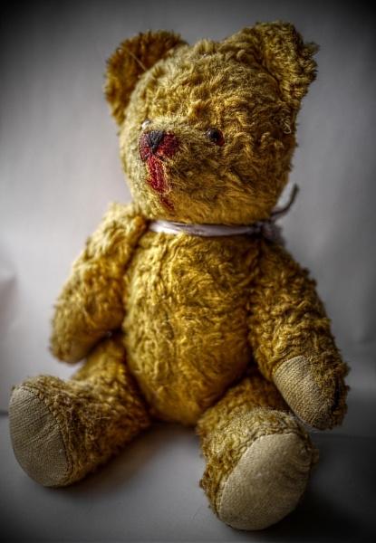 Dads Bear by danieltrude