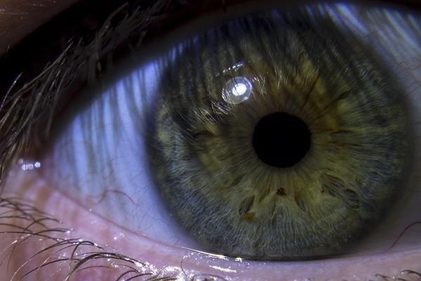 eye in shadow of eyelashes by Luk3