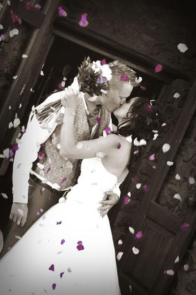 Celebration of love by tari1005