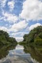 River Tisza