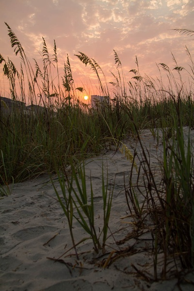 Sunrise and sea oats by LightTouchesSurface