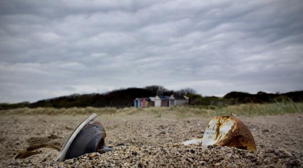 On the Beach by shanelaze