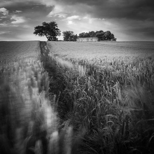 One way by AronRudyk