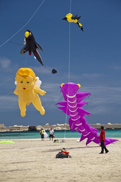 Kite Festival by garnham123