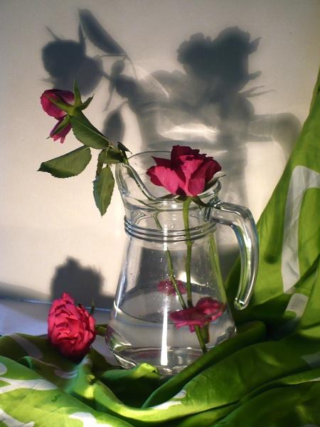 still life by jeanlynch