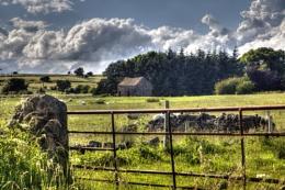 Staffordshire Moorland Scene