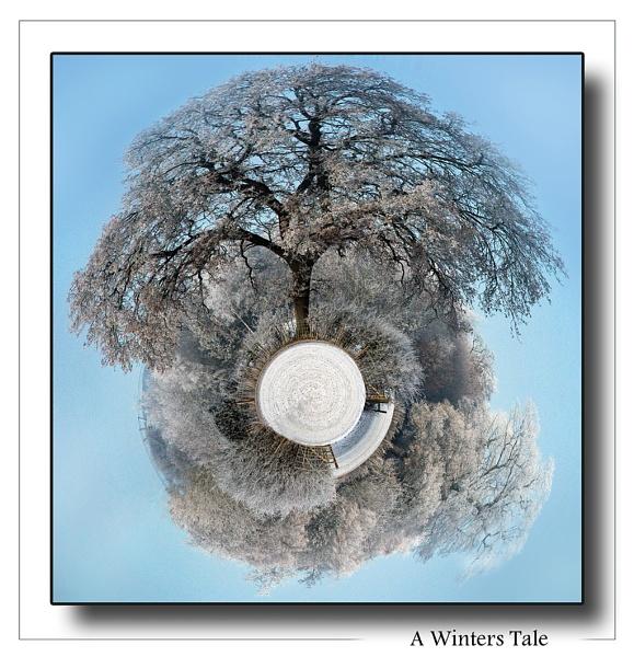 A winter\'s Tale by Mynett