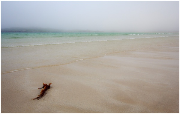Traigh Uuige by AnnChown
