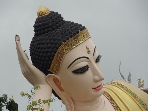 Buddha\'s Eyelashes by alant1