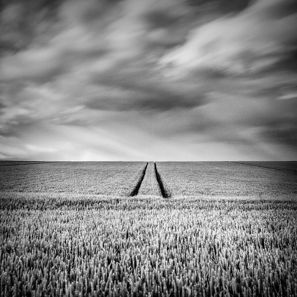 . by AronRudyk