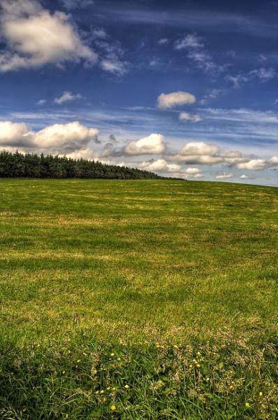 knockagh field landscape by marklewis81