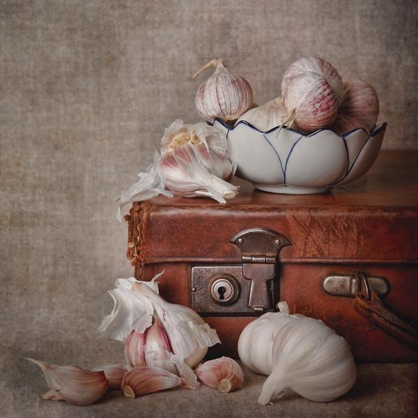 Garlic yet again by cattyal