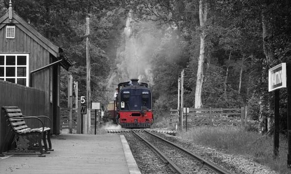 Welsh Mountain  Railway by hairymonkey