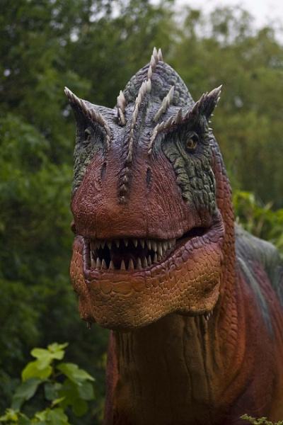 Tyrannosaurus Rex. by tommyld