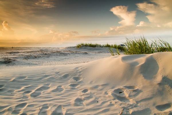 White dune morn by LightTouchesSurface