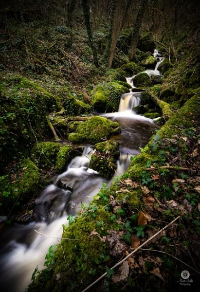 Lush Falls