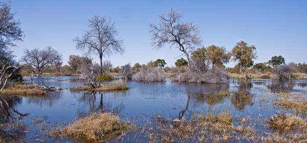 Okavango Delta by pdunstan_Greymoon