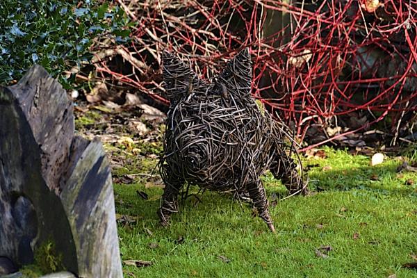 Willow Hog by bgrunes