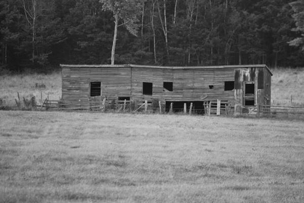 Old Barn II by Mychael
