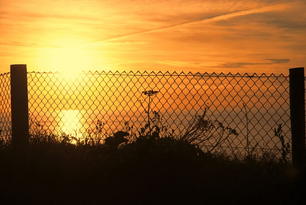 FENCE AT SUNSET by Zacian
