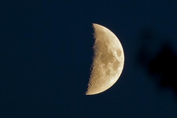 Half Moon by pdunstan_Greymoon