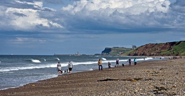 Meandering on the beach by oldjoe