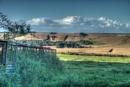 Wilton Landscape
