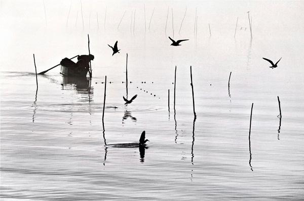 Fisherman\'s Friends by david deveson