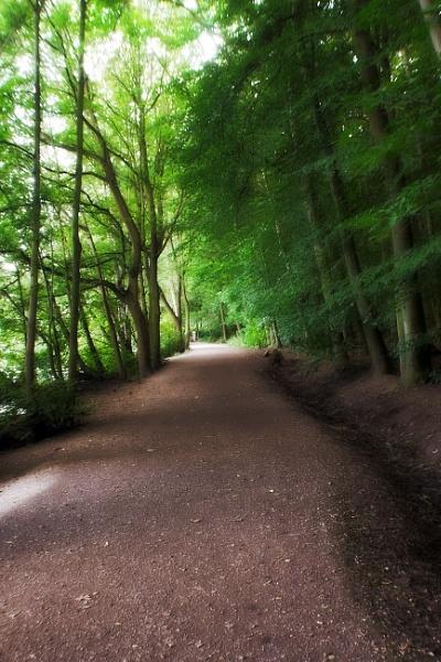 MillerDam Stroll by Sitsaka
