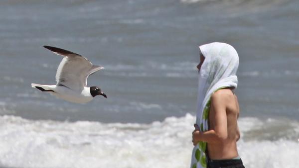 Atlantic Beach, North Carolina by PhotographyBySuzan
