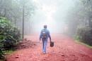 moring colour walk