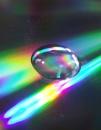 Rainbow Delight