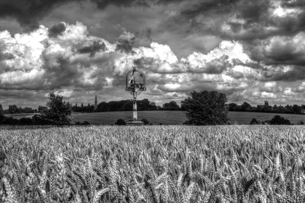 Field of corn by siduck68