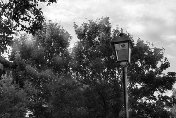 Street Lamp by Emmab93