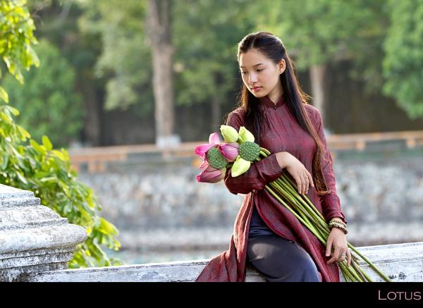 Vietnamese Lotus II by dmhuynh72