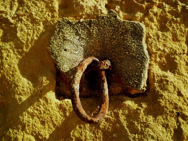 A ring thing IV by Chinga