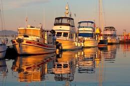 Boat  Gold  Comox