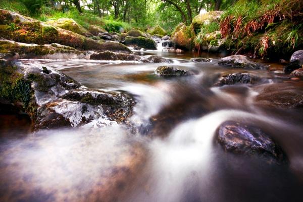 Ullswater Stream by Sloman
