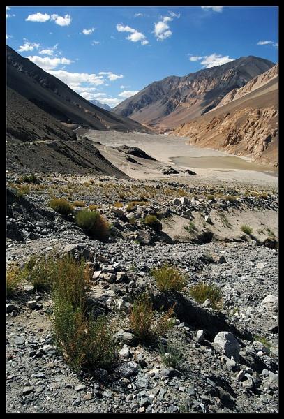 desert landscap by nganthade