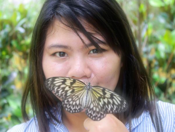May\'s butterfly by Hamlin