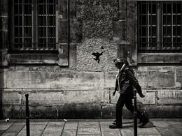 Cupid in Paris