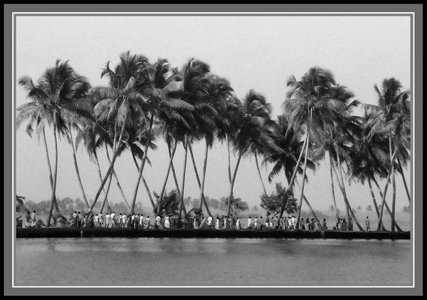 Kerala Back Waters by Deep_Bhatia