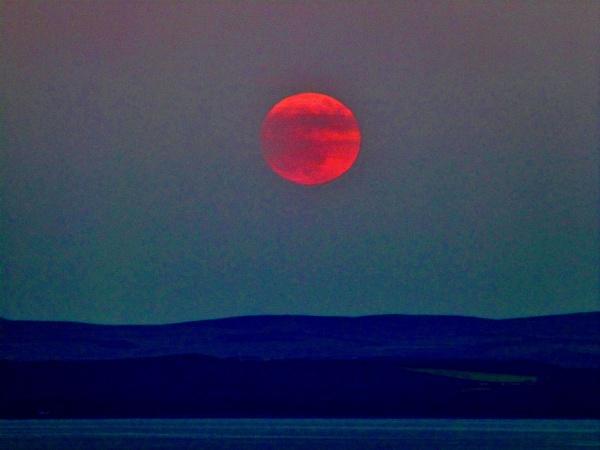 Bleeding Moon by widtink
