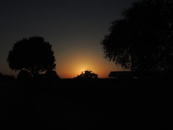 Sunset at the Park by Jdalton23