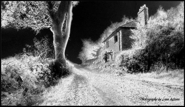 Bleak House by Canonomic