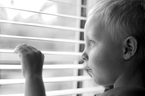 Dylan in the window by m60mrj