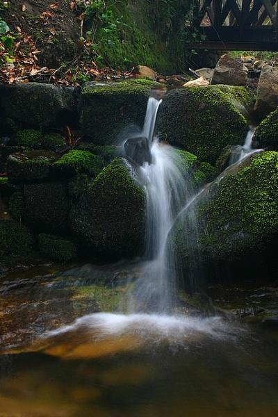 Stream near Falkland by Eckyboy
