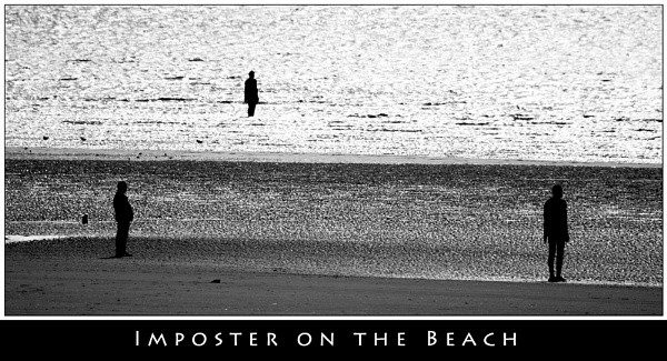 Imposter on the Beach by stevemelvin